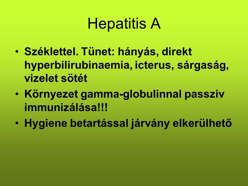Hepatitis A Széklettel. Tünet: hányás, direkt hyperbilirubinaemia, icterus, sárgaság, vizelet sötét Környezet gamma-globulinnal passziv immunizálása!!