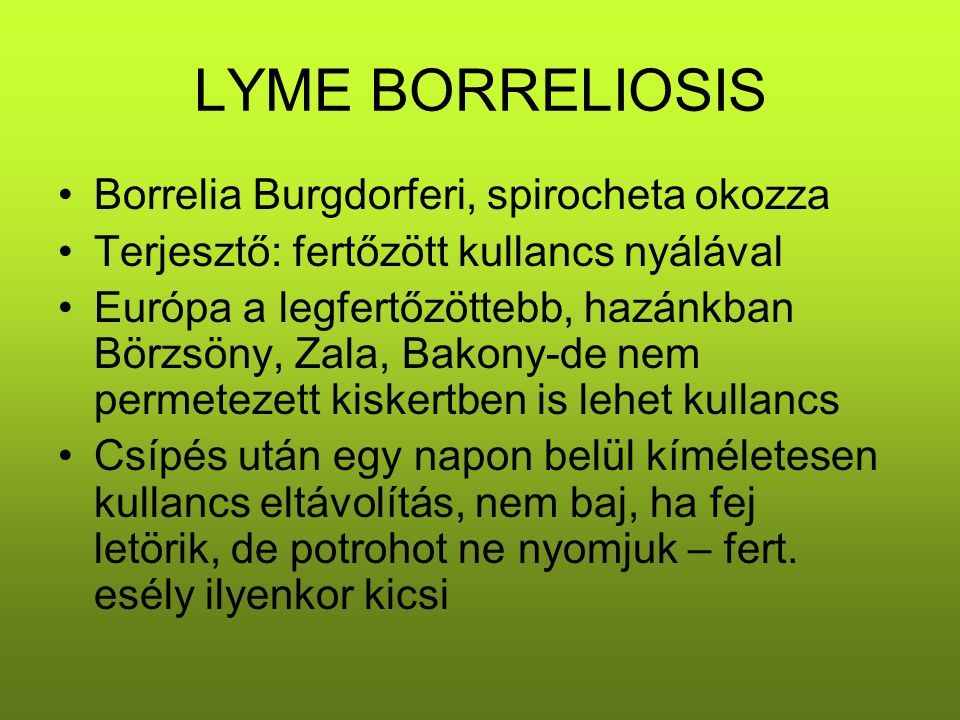 LYME BORRELIOSIS Borrelia Burgdorferi, spirocheta okozza Terjesztő: fertőzött kullancs nyálával Európa a legfertőzöttebb, hazánkban Börzsöny, Zala, Ba