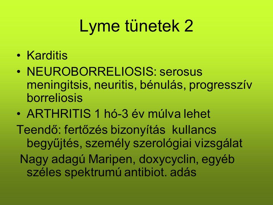Lyme tünetek 2 Karditis NEUROBORRELIOSIS: serosus meningitsis, neuritis, bénulás, progresszív borreliosis ARTHRITIS 1 hó-3 év múlva lehet Teendő: fert