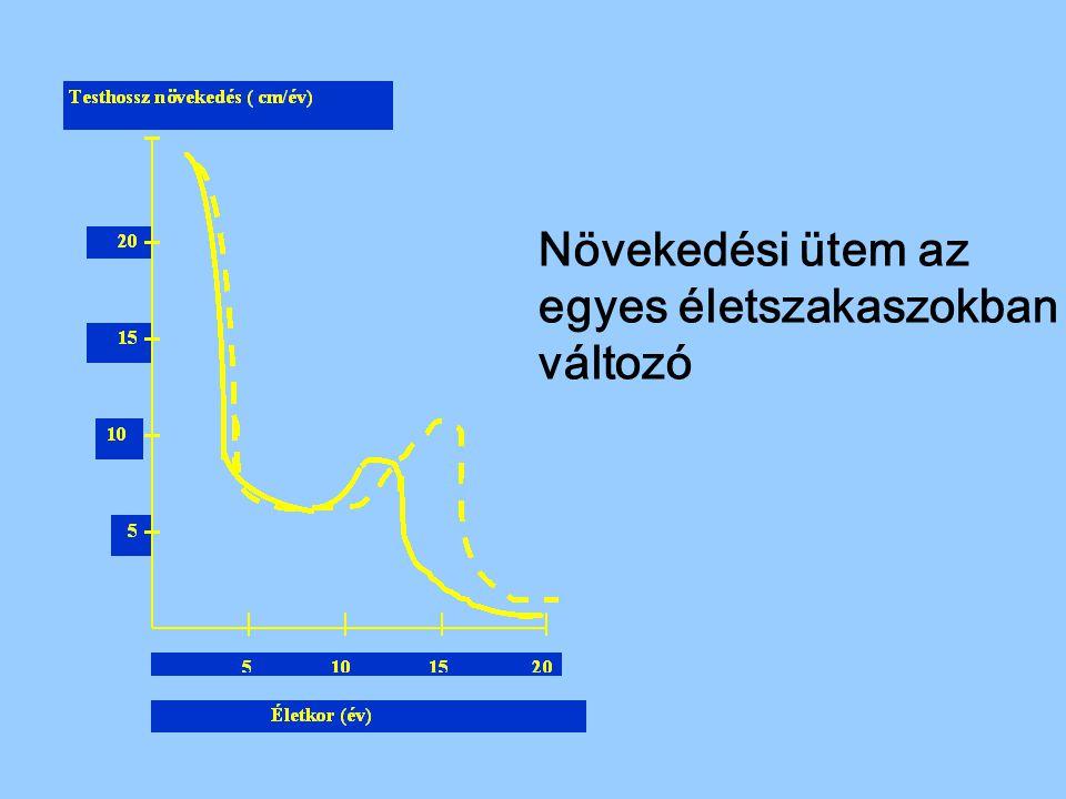 Diabetes mellitus felosztása Primer diabetes mellitus –típus, juvenilis, insulindependens diabetes IDDM –típus, nem inzulindependens diabetes NIDDM (alcsoportja MODY: Maturity onset diabetes of the young – 25 év alatt, nem inzulin dependens) Szekunder diabetes mellitus pancreas megbetegedés után,,endocrin (Cushing kór, acromegalia) Gyógyszeres, genetikus szindrómákban,inzulinreceptor - érzéketlenség Kóros glucosetolerancia Terhességi diabetes I.