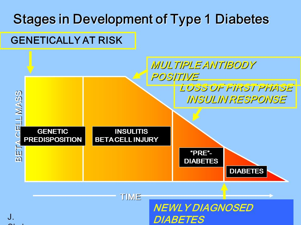 """LOSS OF FIRST PHASE INSULIN RESPONSE TIME Stages in Development of Type 1 Diabetes BETA CELL MASS DIABETES """"PRE""""- DIABETES GENETIC PREDISPOSITION INSU"""