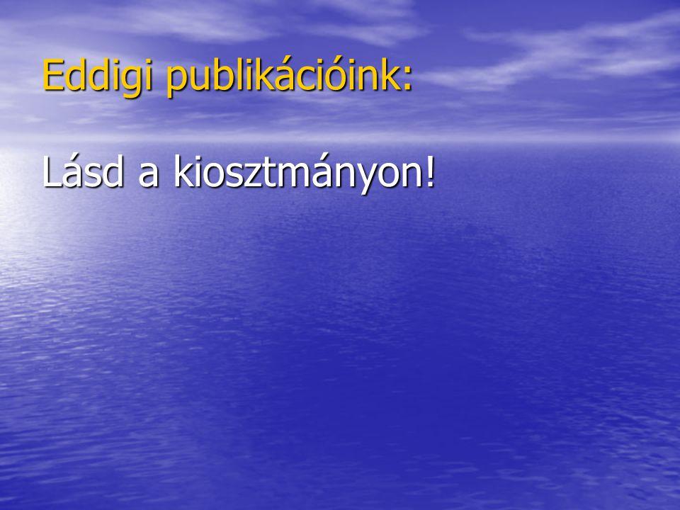 Eddigi publikációink: Lásd a kiosztmányon!