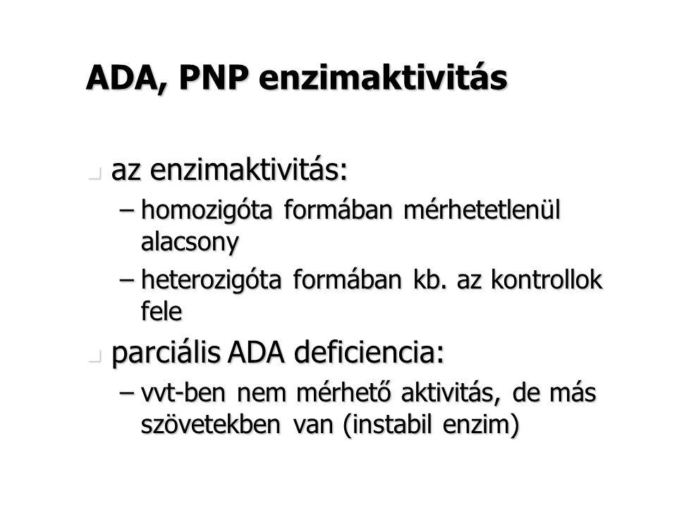 ADA, PNP enzimaktivitás az enzimaktivitás: az enzimaktivitás: –homozigóta formában mérhetetlenül alacsony –heterozigóta formában kb. az kontrollok fel