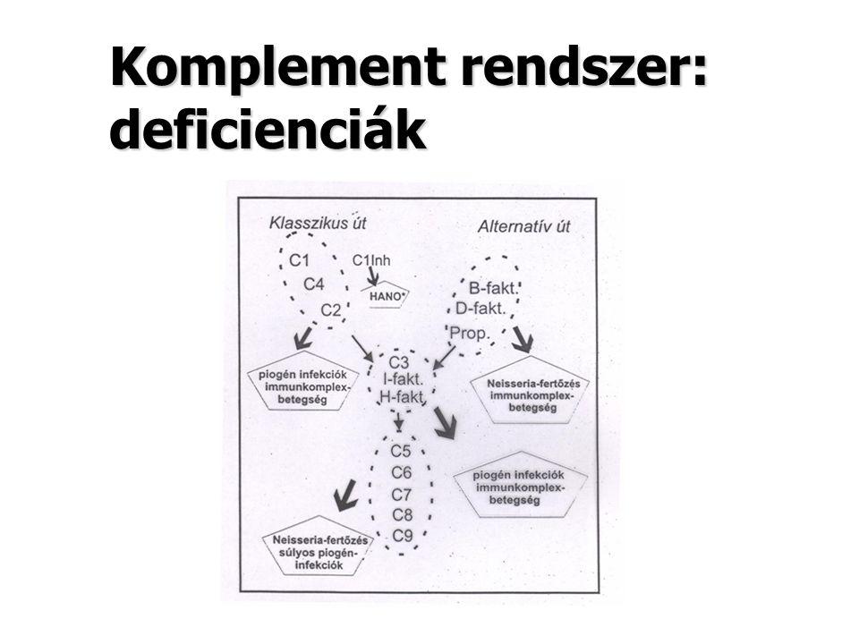 Komplement rendszer: deficienciák