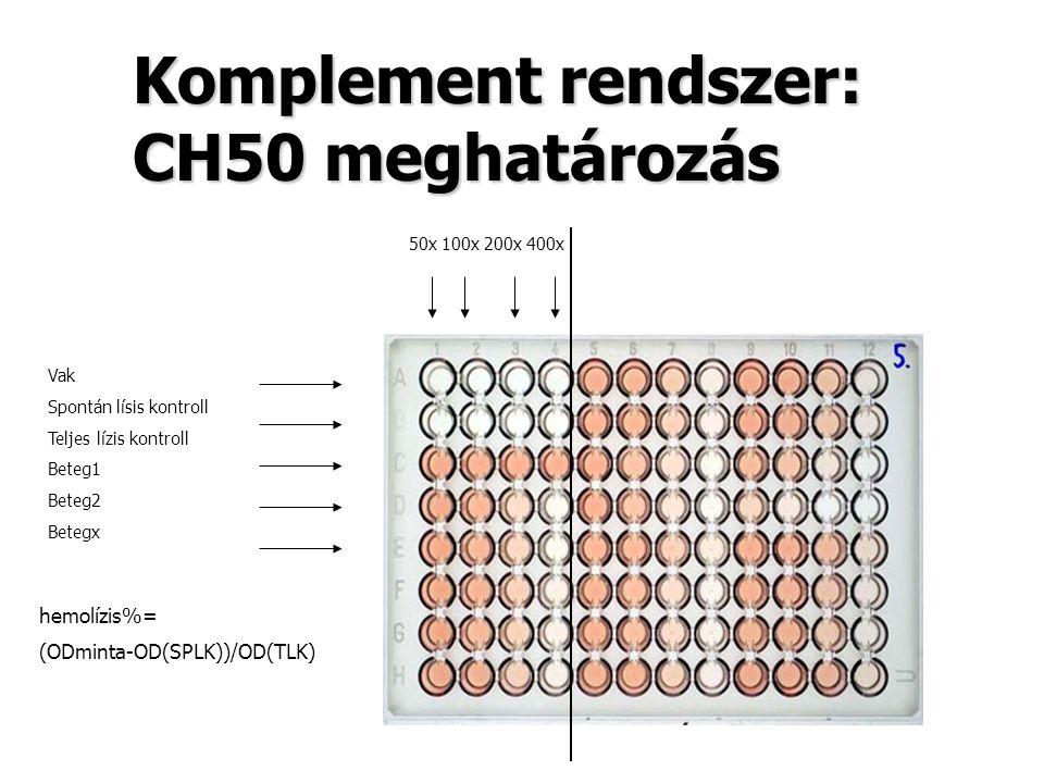 Komplement rendszer: CH50 meghatározás 50x 100x 200x 400x Vak Spontán lísis kontroll Teljes lízis kontroll Beteg1 Beteg2 Betegx hemolízis%= (ODminta-O
