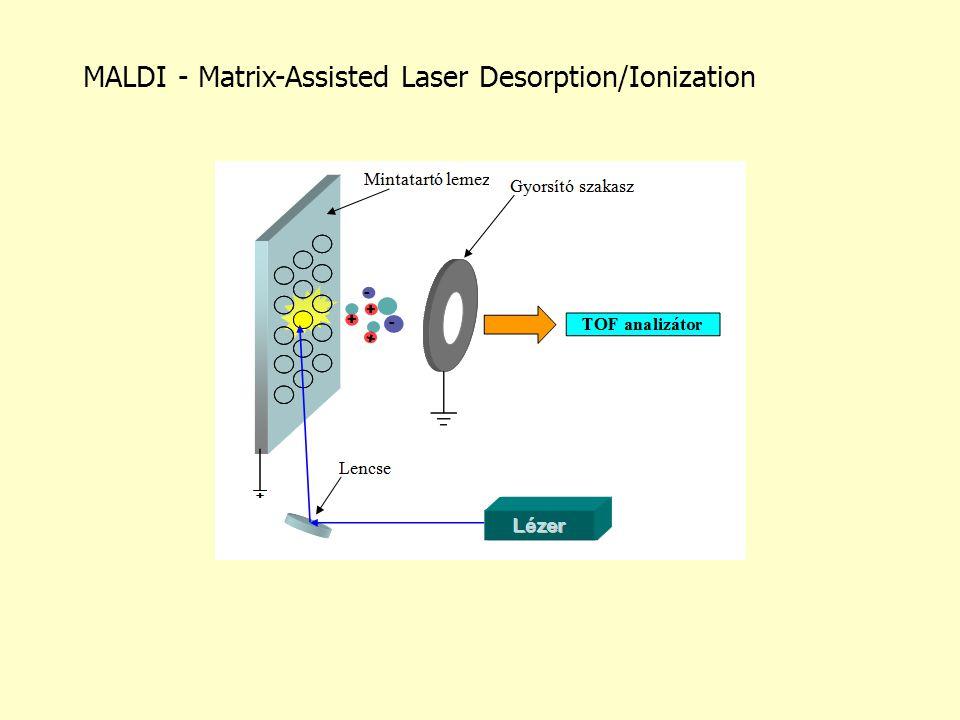 MALDI - Matrix-Assisted Laser Desorption/Ionization