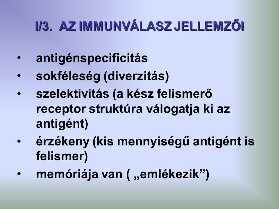 I/3. AZ IMMUNVÁLASZ JELLEMZŐI antigénspecificitás sokféleség (diverzitás) szelektivitás (a kész felismerő receptor struktúra válogatja ki az antigént)