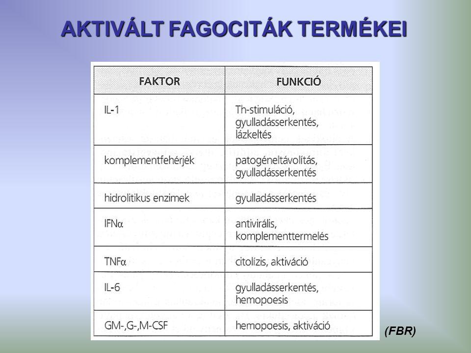 AKTIVÁLT FAGOCITÁK TERMÉKEI (FBR)