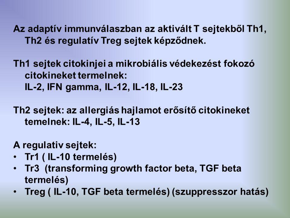 Az adaptív immunválaszban az aktivált T sejtekből Th1, Th2 és regulatív Treg sejtek képződnek. Th1 sejtek citokinjei a mikrobiális védekezést fokozó c
