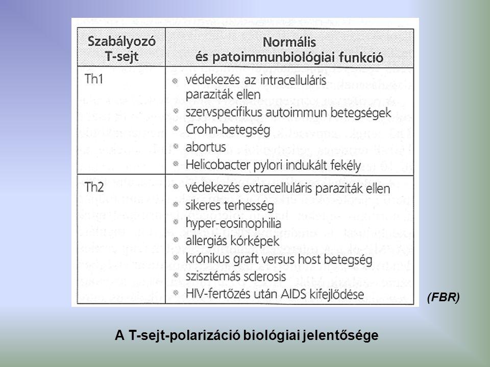 A T-sejt-polarizáció biológiai jelentősége (FBR)
