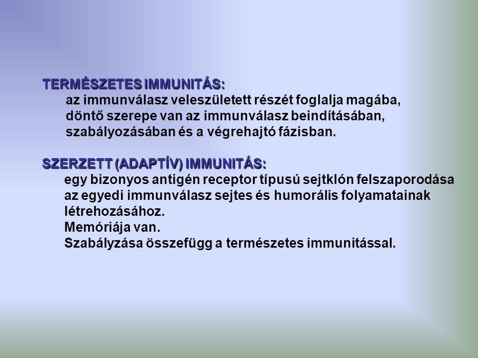 TERMÉSZETES IMMUNITÁS: az immunválasz veleszületett részét foglalja magába, döntő szerepe van az immunválasz beindításában, szabályozásában és a végre