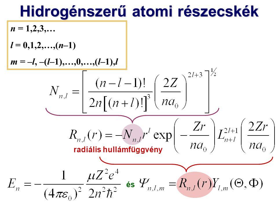 Hidrogénszerű atomi részecskék radiális hullámfüggvény és asszociált Laguerre-polinom n = 1,2,3,… l = 0,1,2,…,(n–1) m = –l, –(l–1),…,0,…,(l–1),l