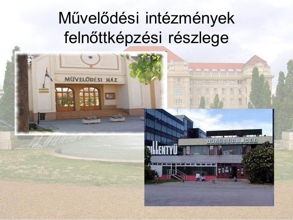 Művelődési intézmények felnőttképzési részlege