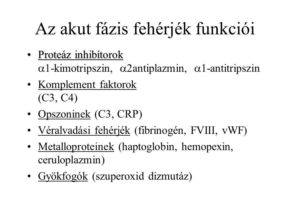 Az akut fázis fehérjék funkciói Proteáz inhibítorokProteáz inhibítorok  1-kimotripszin,  2antiplazmin,  1-antitripszin Komplement faktorok (C3, C4)