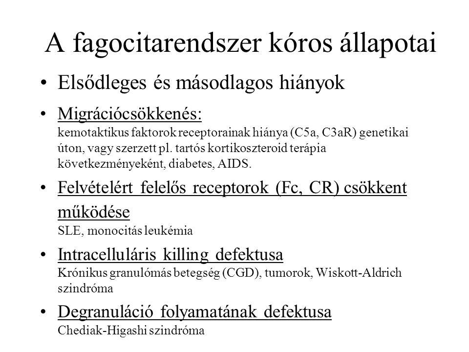 A fagocitarendszer kóros állapotai Elsődleges és másodlagos hiányok Migrációcsökkenés: kemotaktikus faktorok receptorainak hiánya (C5a, C3aR) genetika