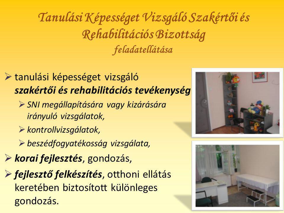 Eredményeink tehetségpontként Pályázatok, művészeti kiállítások: pl.
