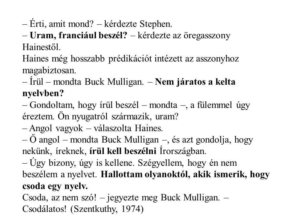 – Érti, amit mond. – kérdezte Stephen. – Uram, franciául beszél.
