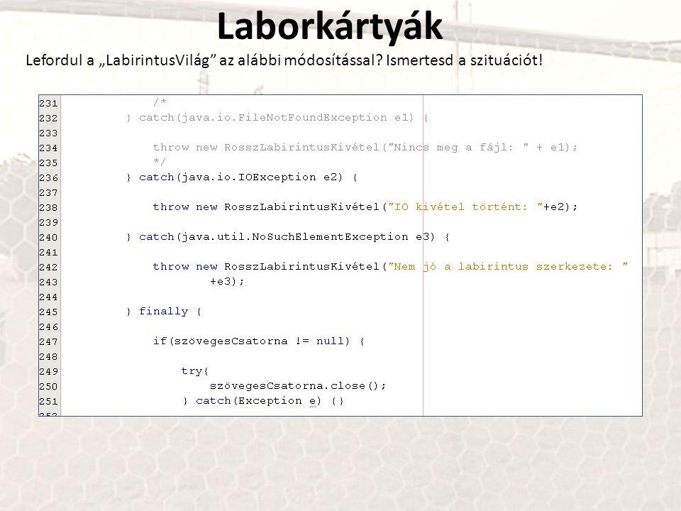 """Laborkártyák Lefordul a """"LabirintusVilág az alábbi módosítással Ismertesd a szituációt!"""