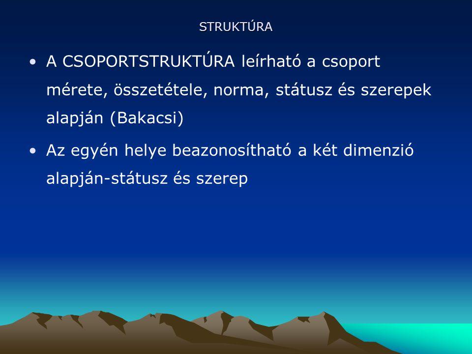 STRUKTÚRA A CSOPORTSTRUKTÚRA leírható a csoport mérete, összetétele, norma, státusz és szerepek alapján (Bakacsi) Az egyén helye beazonosítható a két