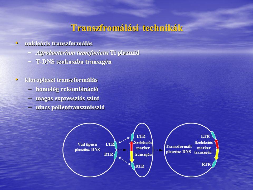 Transzfromálási technikák nukleáris transzformálás nukleáris transzformálás – Agrobacterium tumefaciens Ti plazmid – T-DNS szakaszba transzgén kloroplaszt transzformálás kloroplaszt transzformálás – homológ rekombináció – magas expressziós színt – nincs pollentranszmisszió Vad típusú plasztisz DNS LTR RTR Szelekciós marker LTR RTR transzgén Transzformált plasztisz DNS RTR LTR Szelekciós marker transzgén