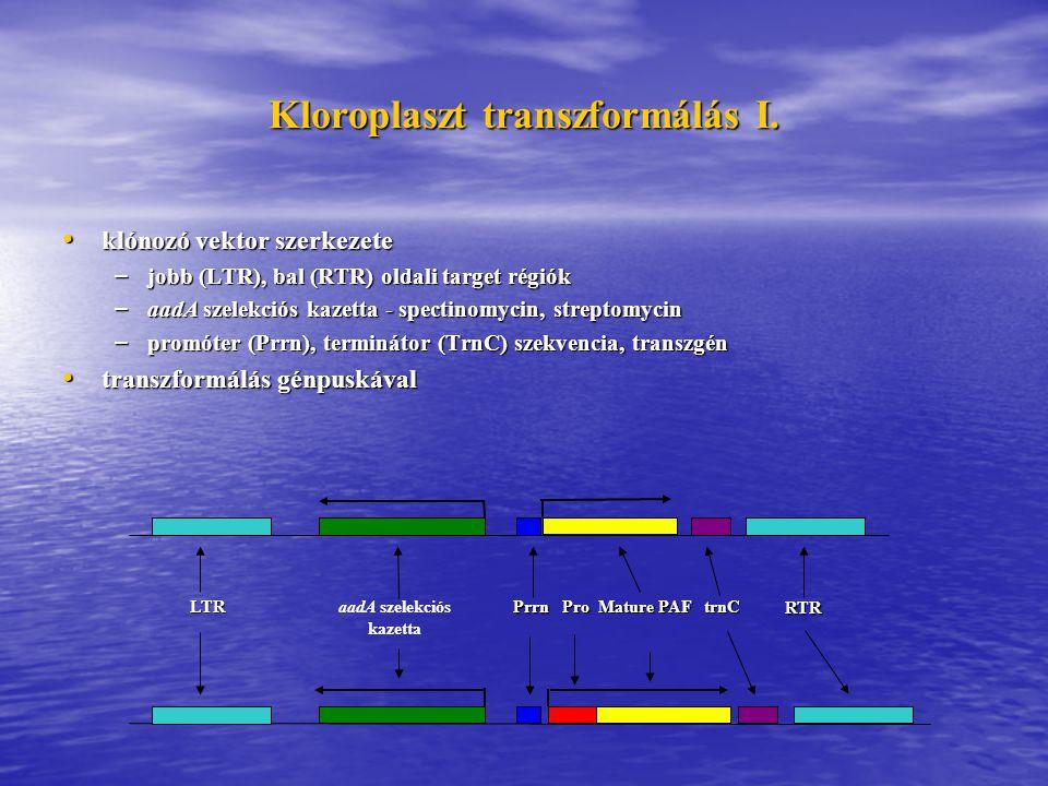 Kloroplaszt transzformálás I. Prrn aadA szelekciós kazetta Mature PAF trnC RTR LTR Pro klónozó vektor szerkezete klónozó vektor szerkezete – jobb (LTR
