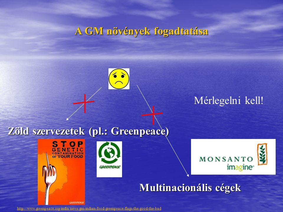 A GM növények fogadtatása Zöld szervezetek (pl.: Greenpeace) Multinacionális cégek Mérlegelni kell.