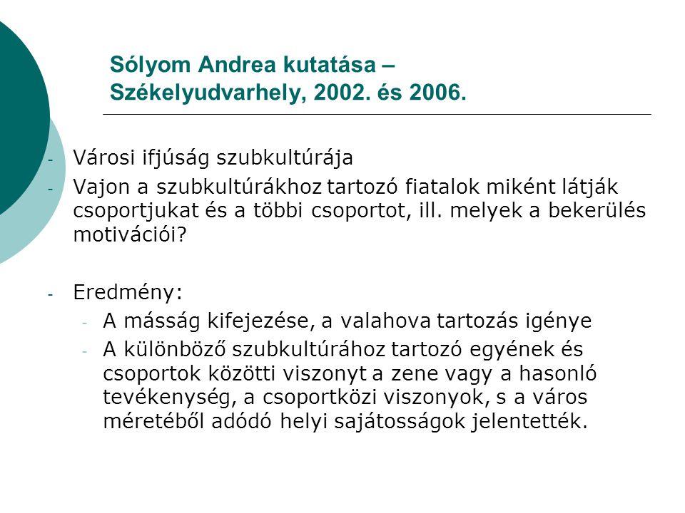 Sólyom Andrea kutatása – Székelyudvarhely, 2002. és 2006. - Városi ifjúság szubkultúrája - Vajon a szubkultúrákhoz tartozó fiatalok miként látják csop