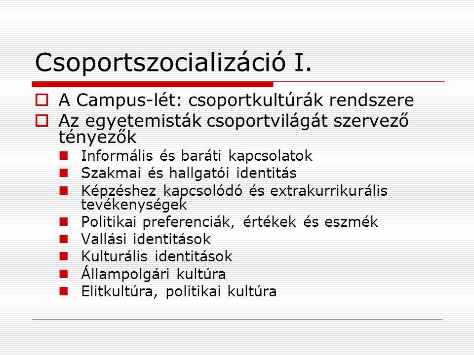 Csoportszocializáció I.  A Campus-lét: csoportkultúrák rendszere  Az egyetemisták csoportvilágát szervező tényezők Informális és baráti kapcsolatok