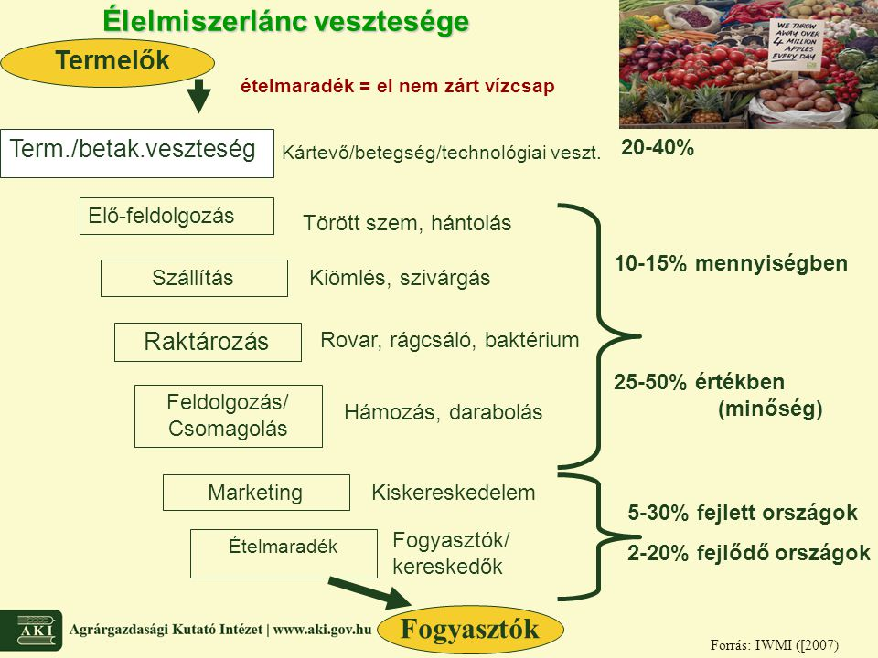 Élelmiszerlánc vesztesége Elő-feldolgozás Szállítás Raktározás Termelők Feldolgozás/ Csomagolás Marketing Ételmaradék Term./betak.veszteség Kártevő/be