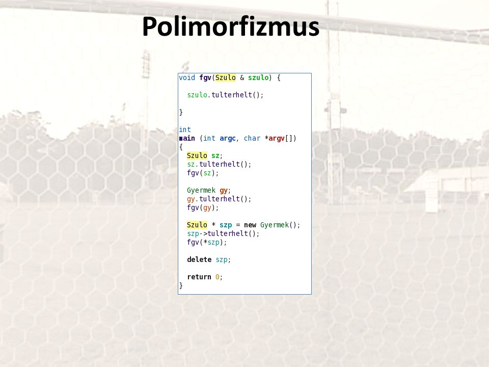Polimorfizmus