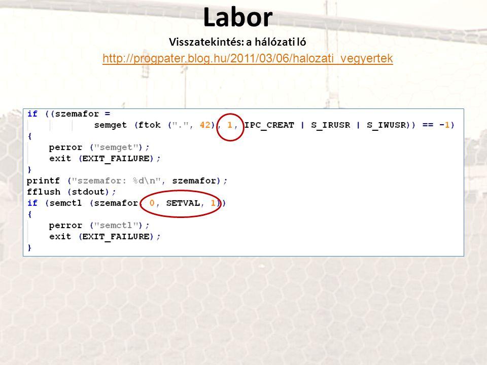 Labor Visszatekintés: a hálózati ló http://progpater.blog.hu/2011/03/06/halozati_vegyertek