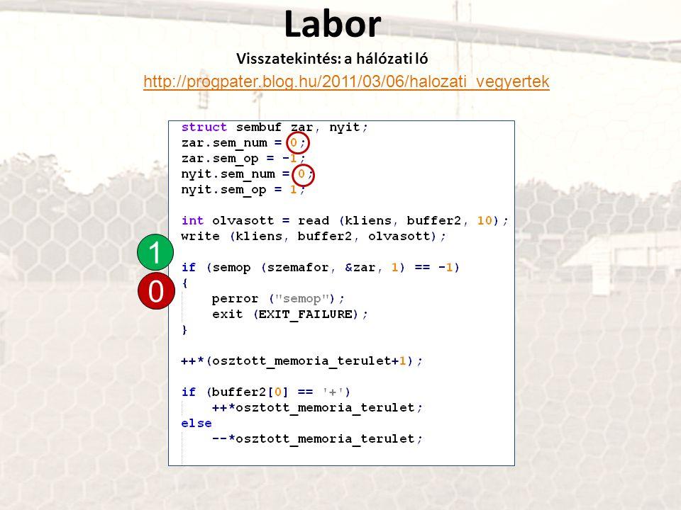 Labor Visszatekintés: a hálózati ló http://progpater.blog.hu/2011/03/06/halozati_vegyertek 1 0