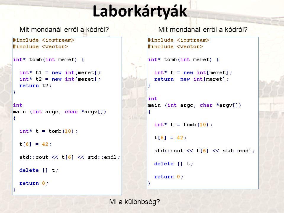 Mit mondanál erről a kódról? Laborkártyák Mi a különbség? Mit mondanál erről a kódról?