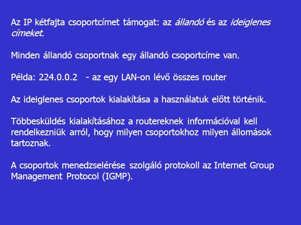 Az IP kétfajta csoportcímet támogat: az állandó és az ideiglenes címeket. Minden állandó csoportnak egy állandó csoportcíme van. Példa: 224.0.0.2 - az