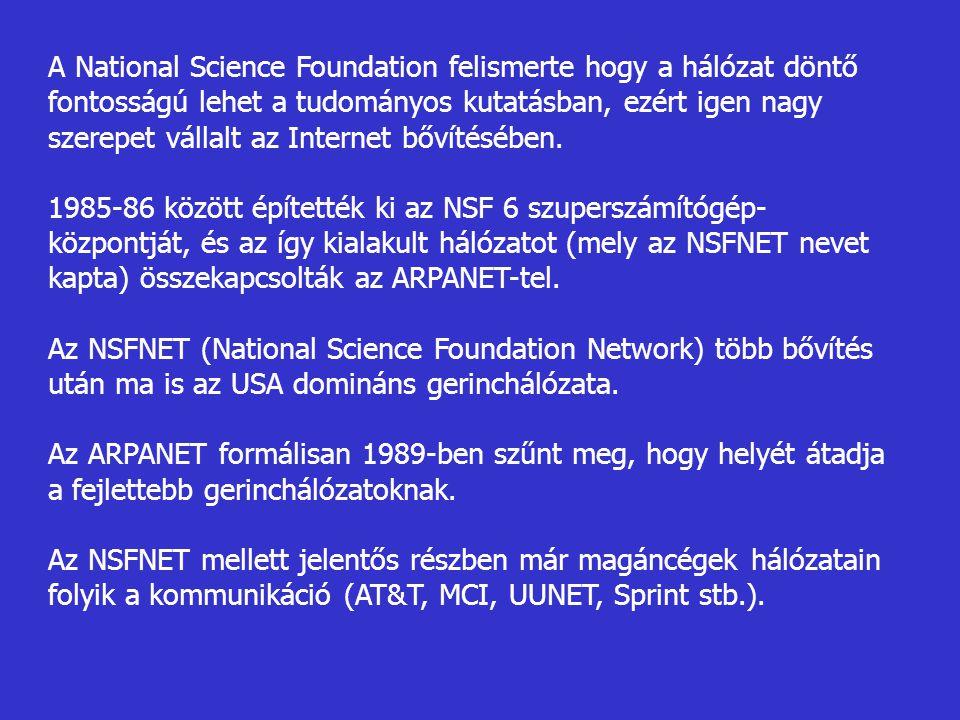 A National Science Foundation felismerte hogy a hálózat döntő fontosságú lehet a tudományos kutatásban, ezért igen nagy szerepet vállalt az Internet b