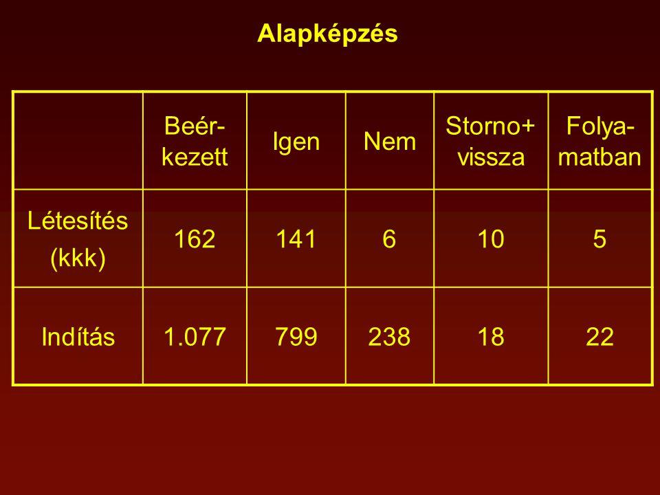 Alapképzés Beér- kezett IgenNem Storno+ vissza Folya- matban Létesítés (kkk) 1621416105 Indítás1.0777992381822