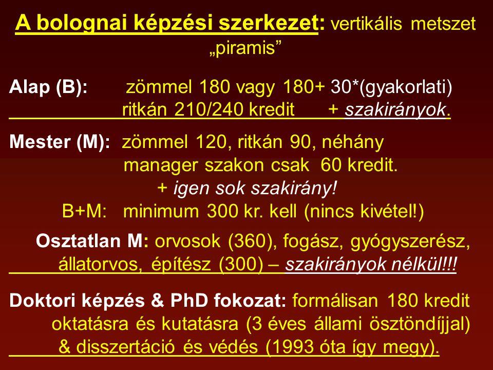 """A bolognai képzési szerkezet: vertikális metszet """"piramis Alap (B): zömmel 180 vagy 180+ 30*(gyakorlati) ritkán 210/240 kredit + szakirányok."""