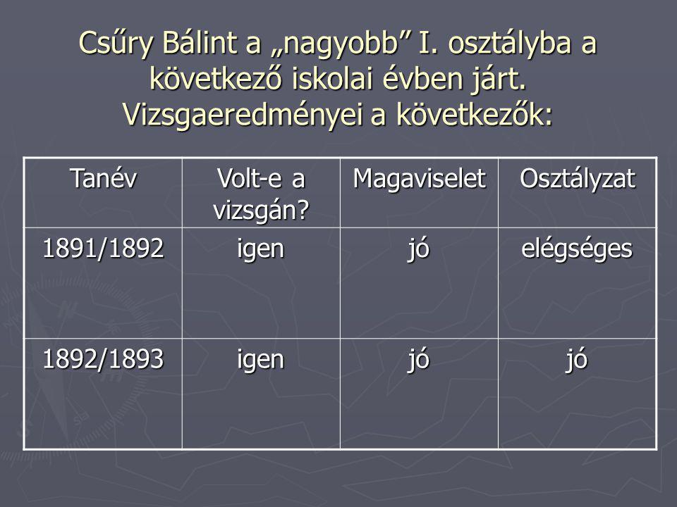 """Csűry Bálint a """"nagyobb"""" I. osztályba a következő iskolai évben járt. Vizsgaeredményei a következők: Tanév Volt-e a vizsgán? MagaviseletOsztályzat 189"""