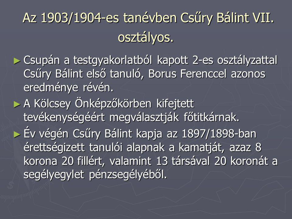 Az 1903/1904-es tanévben Csűry Bálint VII. osztályos.