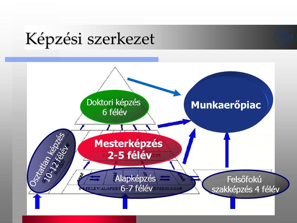 Képzési szerkezet Mesterképzés 2-5 félév Alapképzés 6-7 félév Doktori képzés 6 félév Munkaerőpiac Felsőfokú szakképzés 4 félév Osztatlan képzés 10-12