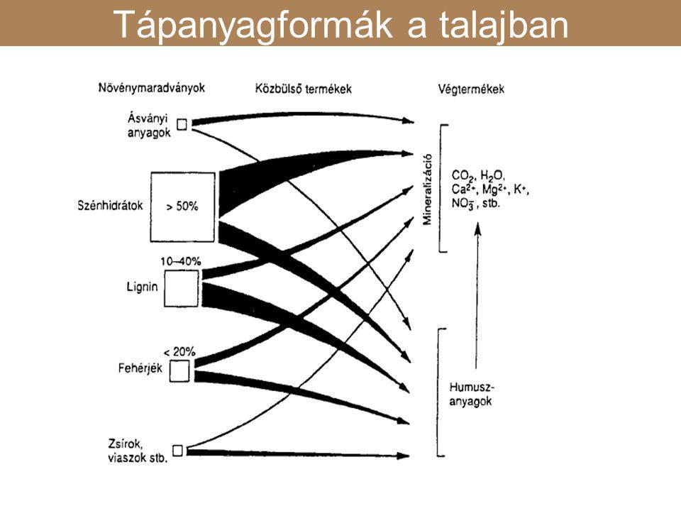 K fixálás hatása az illitrétegek duzzadőképességére K fixálás Tápanyagformák a talajban