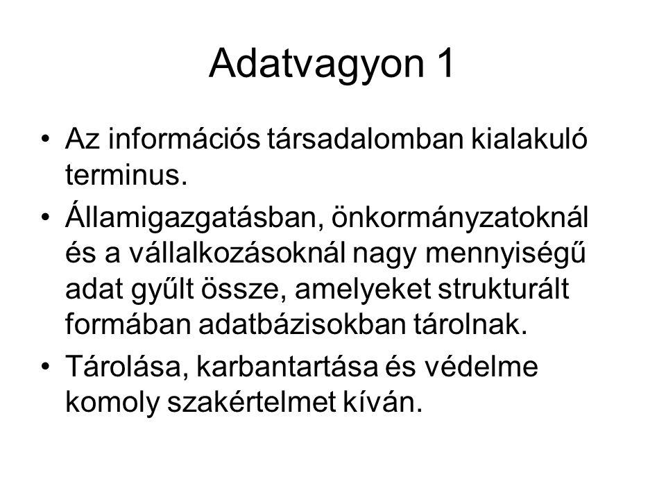 Adatvagyon 1 Az információs társadalomban kialakuló terminus.
