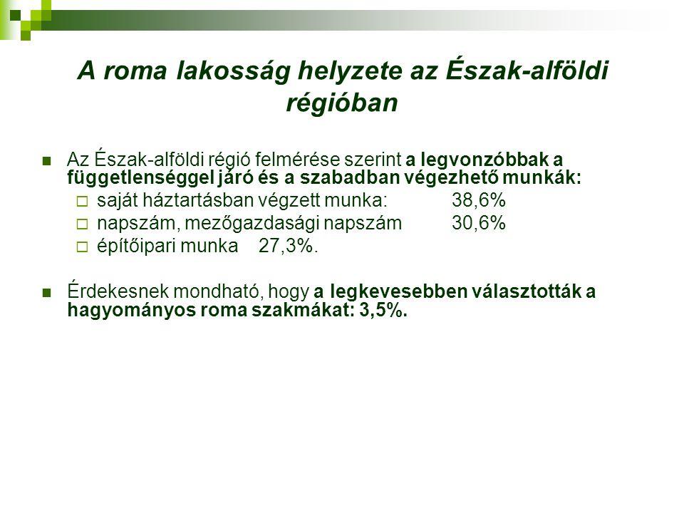 Észak-alföldi Regionális Munkaügyi Központ programjai A romák társadalmi integrációját elősegítő és azzal összefüggő intézke- dések – 1021/2007.