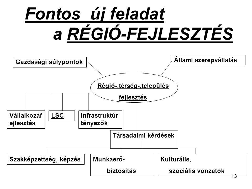13 Fontos új feladat a RÉGIÓ-FEJLESZTÉS Gazdasági súlypontok Állami szerepvállalás Régió-,térség-,település fejlesztés Vállalkozáf ejlesztés LSCInfras