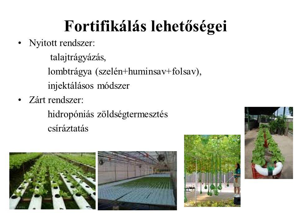 Csíranövény – funkcionális növény A csíra a magból kifejlődött fiatal (néhány napos) növény.