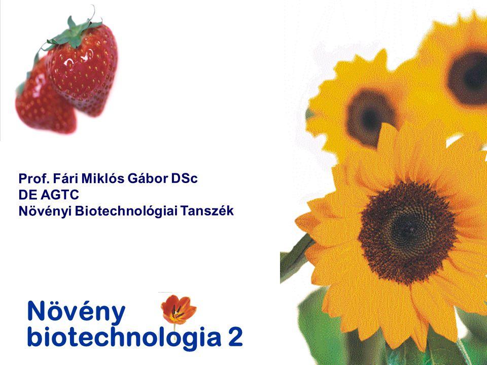 Növény biotechnologia 2 Prof. Fári Miklós Gábor DSc DE AGTC Növényi Biotechnológiai Tanszék