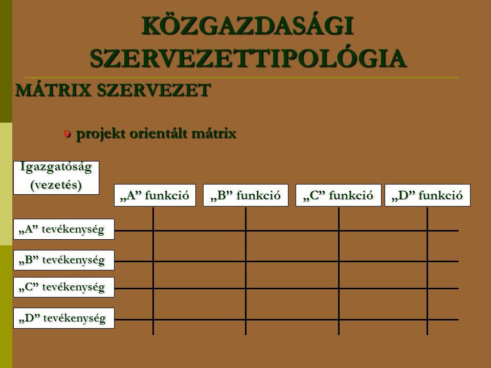 """MÁTRIX SZERVEZET projekt orientált mátrix Igazgatóság(vezetés) """"A"""" funkció """"B"""" funkció """"C"""" funkció """"D"""" funkció """"A"""" tevékenység """"B"""" tevékenység """"C"""" tev"""