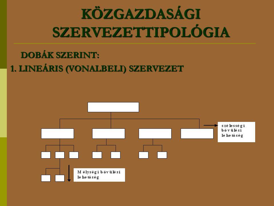KÖZGAZDASÁGI SZERVEZETTIPOLÓGIA DOBÁK SZERINT: 1. LINEÁRIS (VONALBELI) SZERVEZET