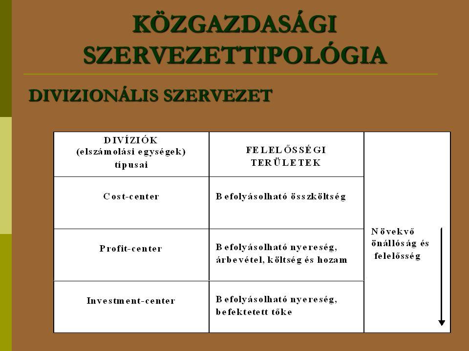 KÖZGAZDASÁGI SZERVEZETTIPOLÓGIA DIVIZIONÁLIS SZERVEZET