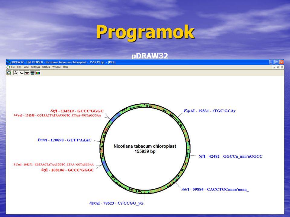 Programok pDRAW32
